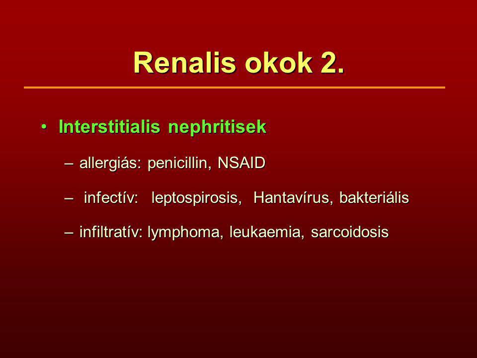 Renalis okok 2. Interstitialis nephritisekInterstitialis nephritisek –allergiás: penicillin, NSAID – infectív: leptospirosis, Hantavírus, bakteriális