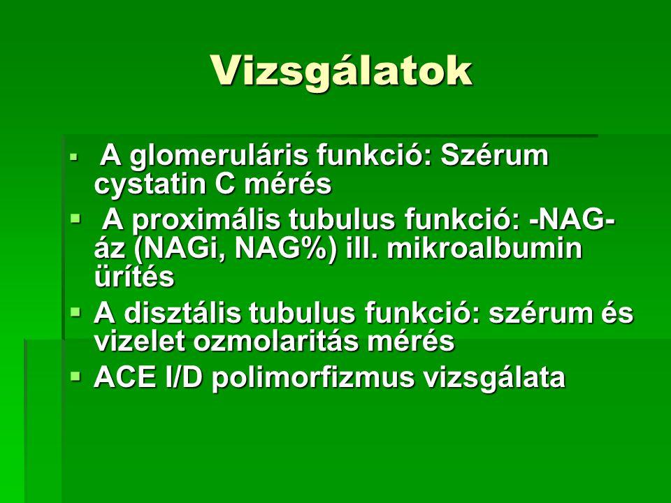 Vizsgálatok  A glomeruláris funkció: Szérum cystatin C mérés  A proximális tubulus funkció: -NAG- áz (NAGi, NAG%) ill. mikroalbumin ürítés  A diszt