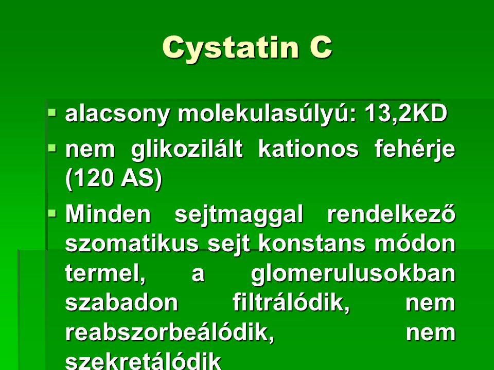 Cystatin C  alacsony molekulasúlyú: 13,2KD  nem glikozilált kationos fehérje (120 AS)  Minden sejtmaggal rendelkező szomatikus sejt konstans módon