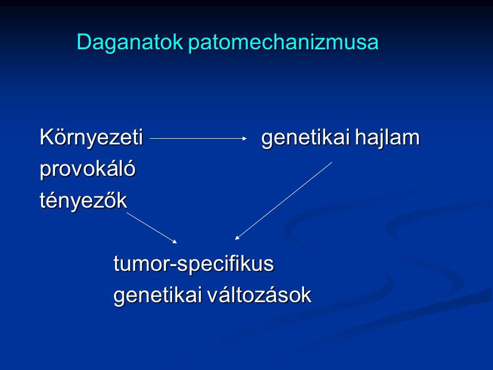 Daganatok patomechanizmusa Daganatok patomechanizmusa Környezetigenetikai hajlam Környezetigenetikai hajlam provokáló provokáló tényezők tényezőktumor