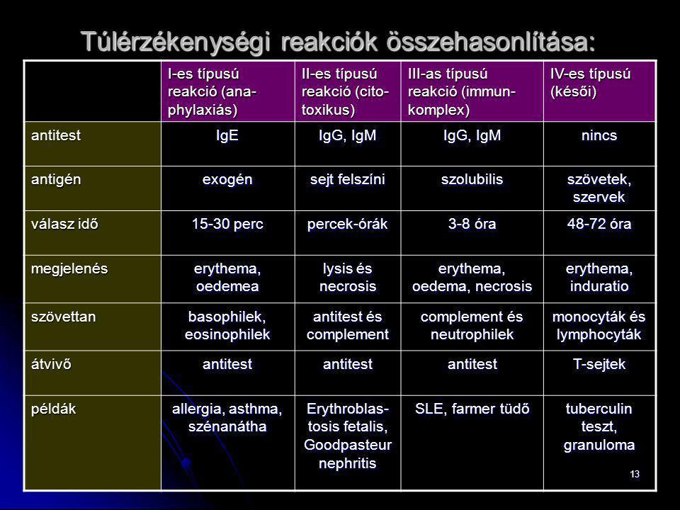 13 I-es típusú reakció (ana- phylaxiás) II-es típusú reakció (cito- toxikus) III-as típusú reakció (immun- komplex) IV-es típusú (késői) antitestIgE I