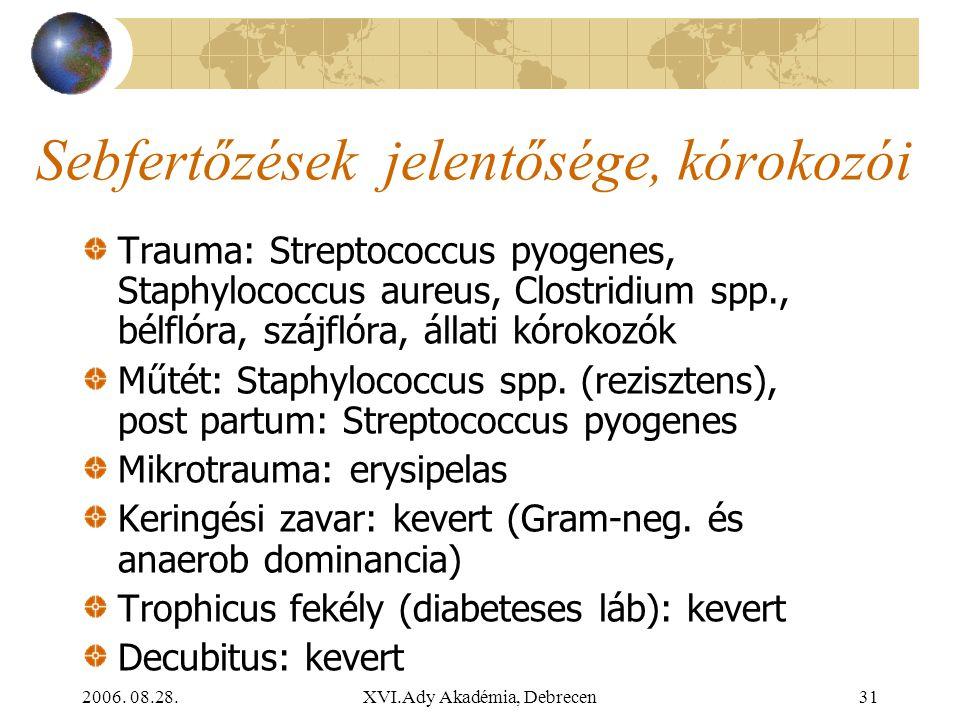2006. 08.28.XVI.Ady Akadémia, Debrecen31 Sebfertőzések jelentősége, kórokozói Trauma: Streptococcus pyogenes, Staphylococcus aureus, Clostridium spp.,