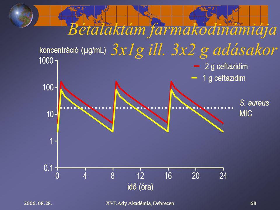 2006. 08.28.XVI.Ady Akadémia, Debrecen68 S. aureus MIC 0.1 10 100 1000 1 koncentráció (µg/mL) 01224204816 idő (óra) 2 g ceftazidim 1 g ceftazidim Béta