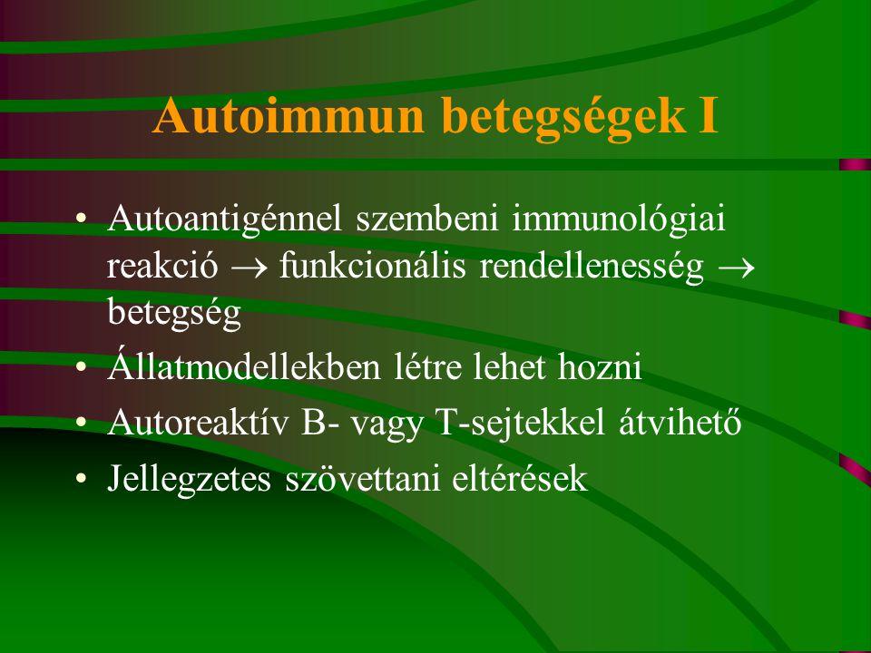Autoimmun betegségek I Autoantigénnel szembeni immunológiai reakció  funkcionális rendellenesség  betegség Állatmodellekben létre lehet hozni Autoreaktív B- vagy T-sejtekkel átvihető Jellegzetes szövettani eltérések