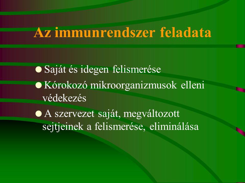 Az immunrendszer feladata  Saját és idegen felismerése  Kórokozó mikroorganizmusok elleni védekezés  A szervezet saját, megváltozott sejtjeinek a felismerése, eliminálása