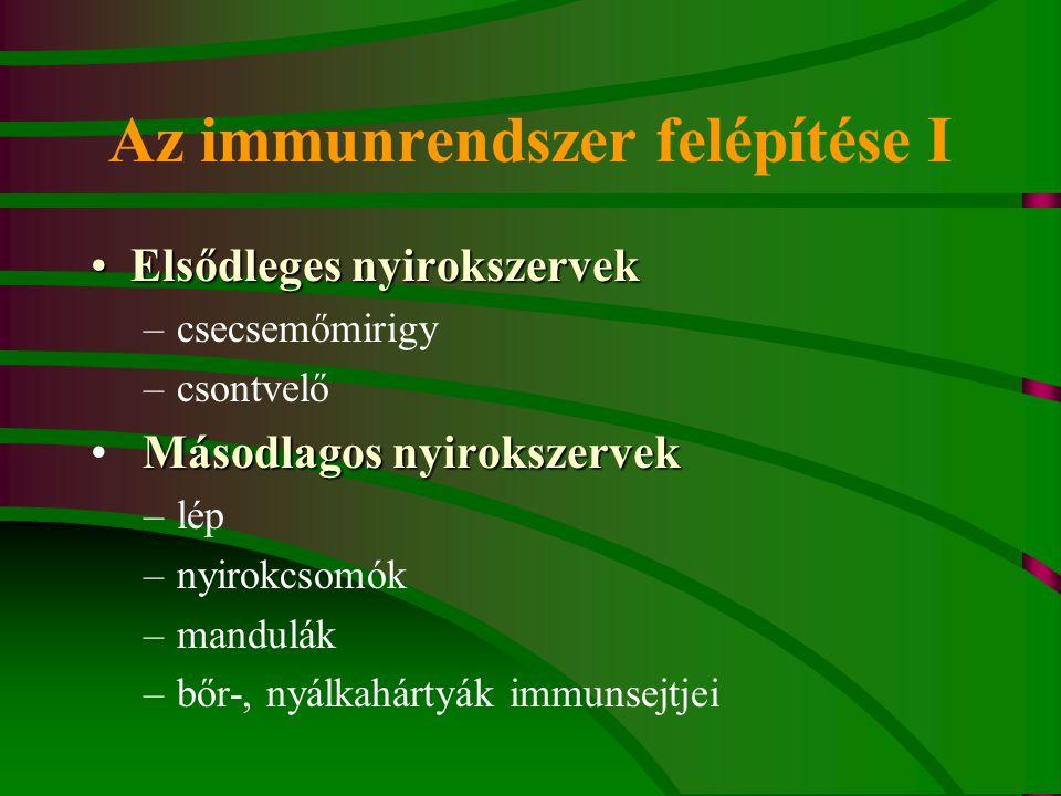 Az immunrendszer felépítése I Elsődleges nyirokszervekElsődleges nyirokszervek –csecsemőmirigy –csontvelő Másodlagos nyirokszervek –lép –nyirokcsomók –mandulák –bőr-, nyálkahártyák immunsejtjei