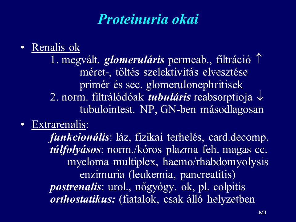 MJ Proteinuria okai Renalis ok 1. megvált. glomeruláris permeab., filtráció  méret-, töltés szelektivitás elvesztése primér és sec. glomerulonephriti