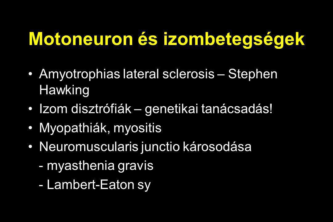 Motoneuron és izombetegségek Amyotrophias lateral sclerosis – Stephen Hawking Izom disztrófiák – genetikai tanácsadás! Myopathiák, myositis Neuromuscu