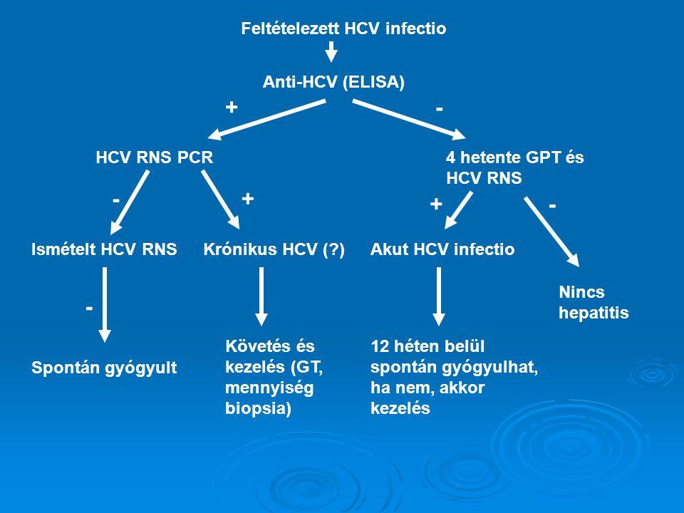 Feltételezett HCV infectio Anti-HCV (ELISA) HCV RNS PCR4 hetente GPT és HCV RNS +- Ismételt HCV RNS Spontán gyógyult - - Akut HCV infectio Nincs hepatitis Krónikus HCV (?) + 12 héten belül spontán gyógyulhat, ha nem, akkor kezelés Követés és kezelés (GT, mennyiség biopsia) +-