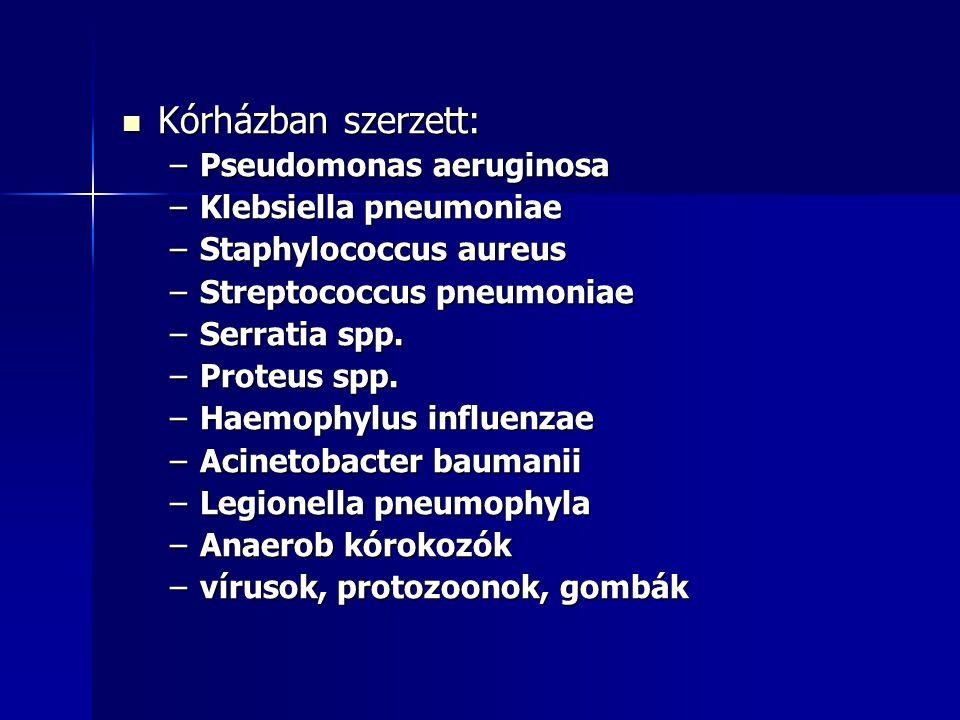 Kórházban szerzett: Kórházban szerzett: –Pseudomonas aeruginosa –Klebsiella pneumoniae –Staphylococcus aureus –Streptococcus pneumoniae –Serratia spp.