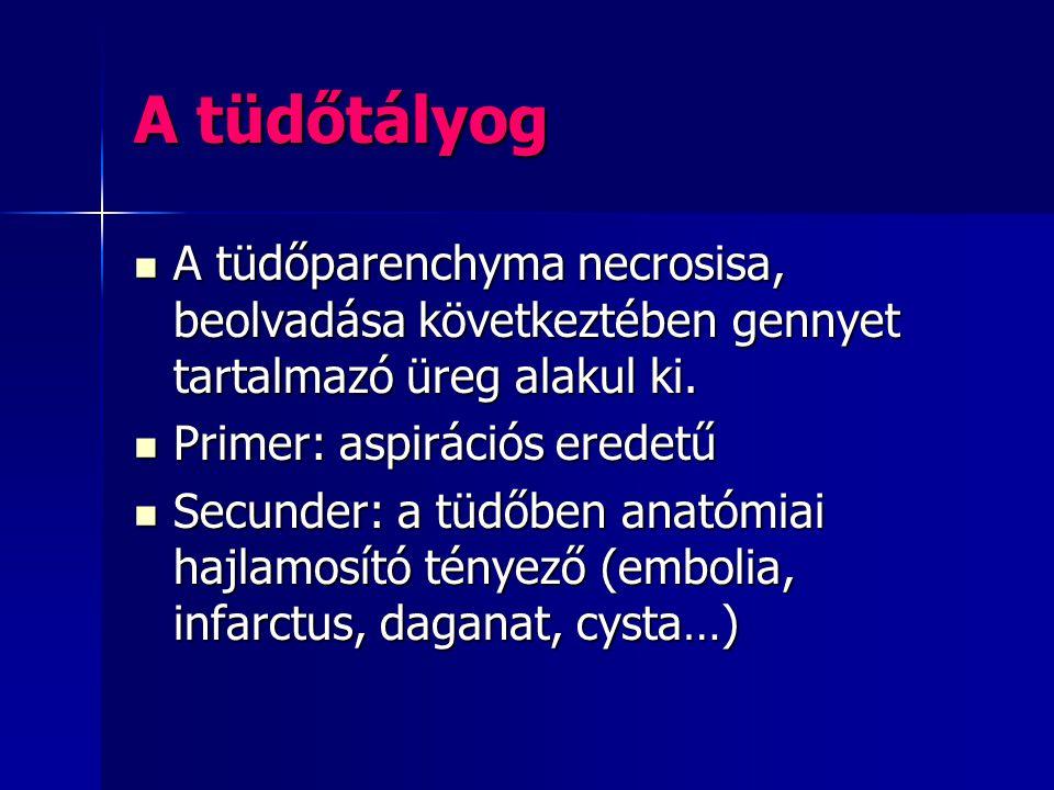 A tüdőtályog A tüdőparenchyma necrosisa, beolvadása következtében gennyet tartalmazó üreg alakul ki. A tüdőparenchyma necrosisa, beolvadása következté