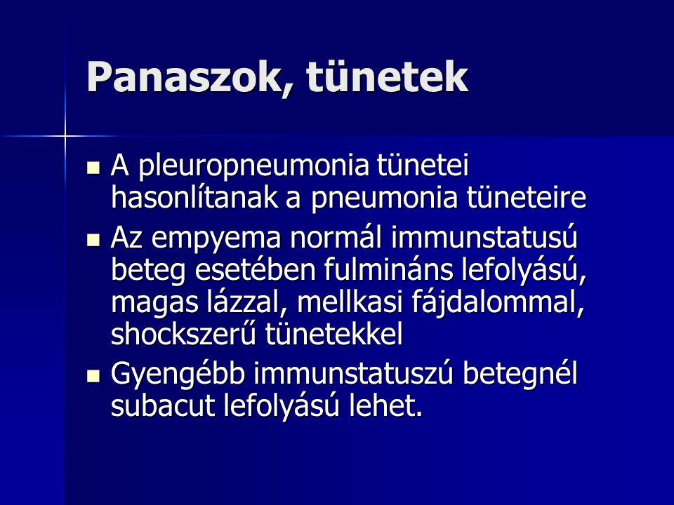 Panaszok, tünetek A pleuropneumonia tünetei hasonlítanak a pneumonia tüneteire A pleuropneumonia tünetei hasonlítanak a pneumonia tüneteire Az empyema