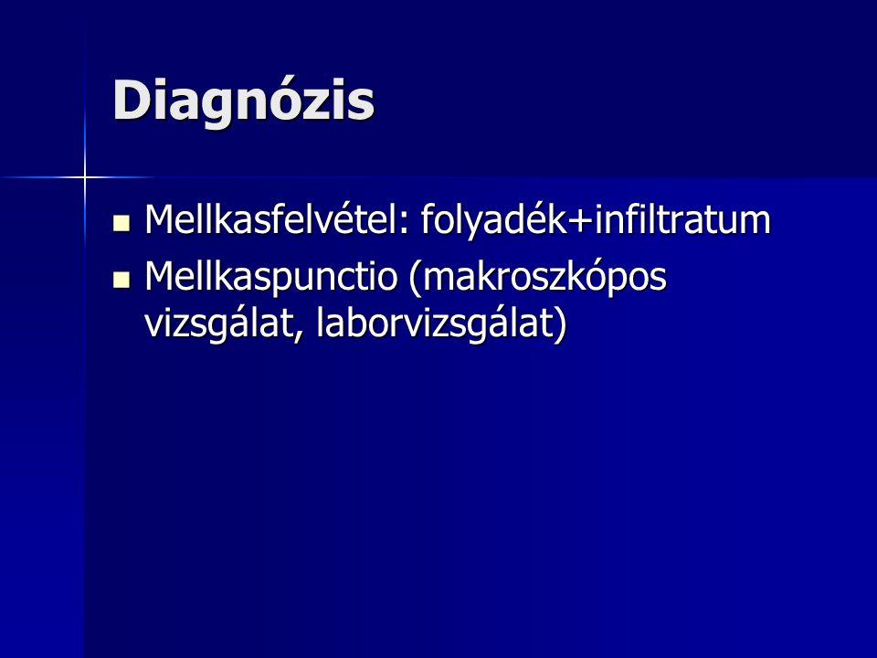 Diagnózis Mellkasfelvétel: folyadék+infiltratum Mellkasfelvétel: folyadék+infiltratum Mellkaspunctio (makroszkópos vizsgálat, laborvizsgálat) Mellkasp