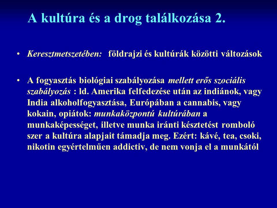 A kultúra és a drog találkozása 2.