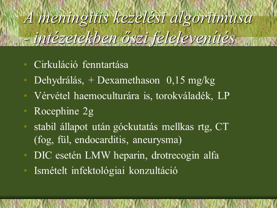 A meningitis kezelési algoritmusa - intézetekben őszi felelevenítés Cirkuláció fenntartása Dehydrálás, + Dexamethason 0,15 mg/kg Vérvétel haemoculturá