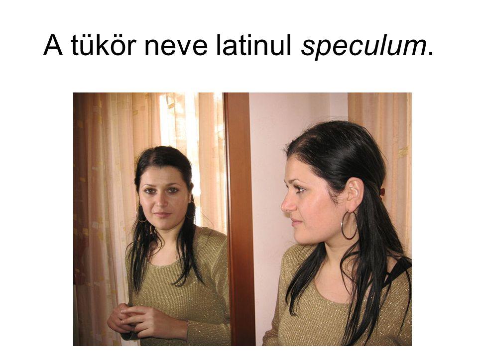 A tükör neve latinul speculum.