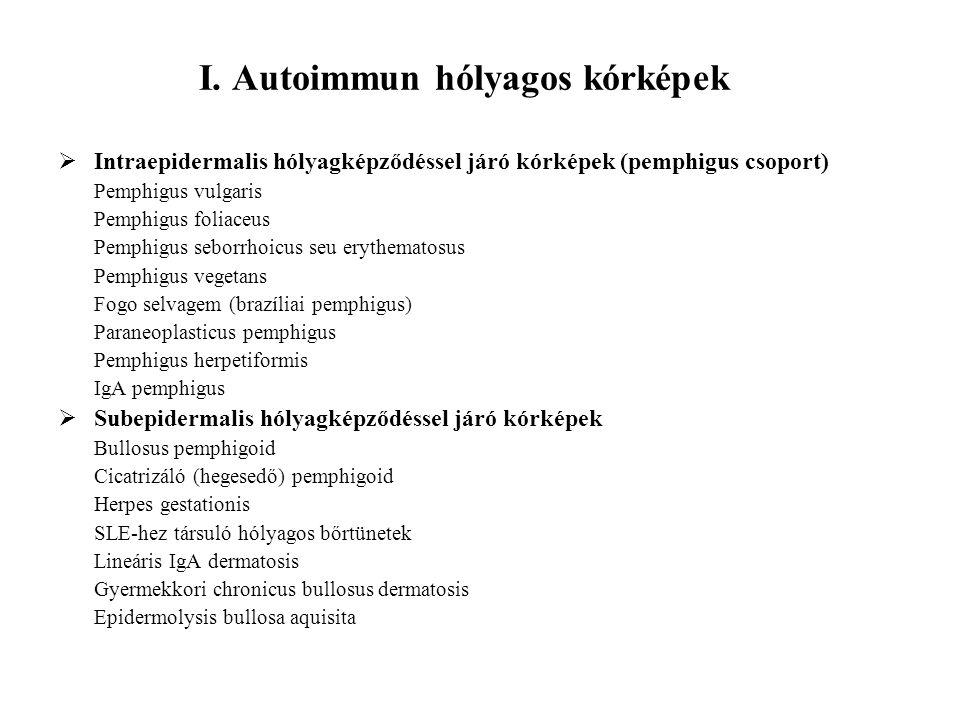 I. Autoimmun hólyagos kórképek  Intraepidermalis hólyagképződéssel járó kórképek (pemphigus csoport) Pemphigus vulgaris Pemphigus foliaceus Pemphigus
