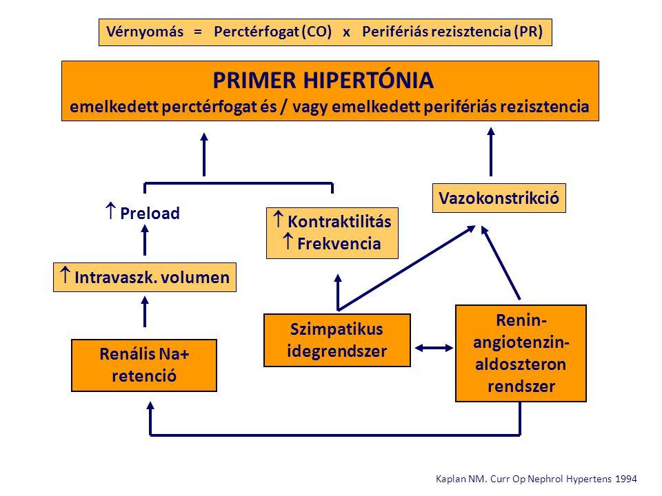 UKPDS=United Kingdom Prospective Diabetes Study; MDRD=Modification of Diet in Renal Disease; HOT=Hypertension Optimal Treatment; AASK=African American Study of Kidney Disease; RENAAL=Reduction of Endpoints in NIDDM with the Angiotensin II Antagonist Losartan; IDNT=Irbesartan Diabetic Nephropathy Trial; MAP=átlagos artériás nyomás.