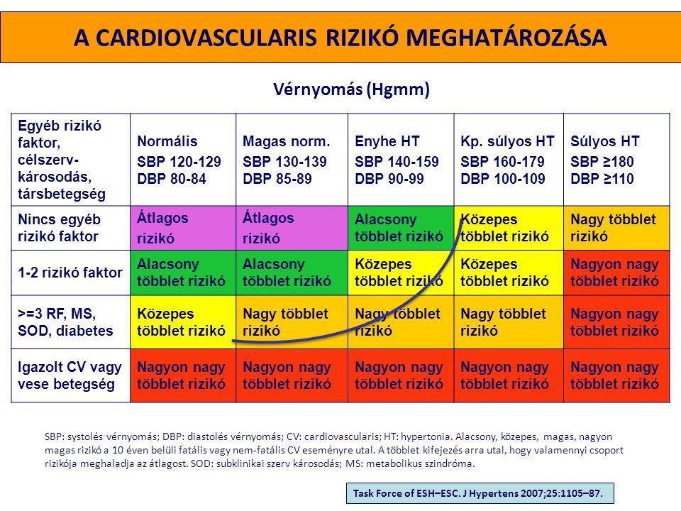 - Systolés és diastolés vérnyomás - A pulzusnyomás mértéke (időskorban) - Életkor(F>55 év; N>65 év) - Dohányzás - Dyslipidaemia TC>5,0 mmol/l, LDL-C >3,0 mmol/l HDL-C: F <1,0 mmol/l, N <1,2 mmol/l TG >1,7 mmol/l - Éhomi vércukor 5,6-6,9 mmol/l - Kóros glucose tolerancia teszt - Hasi típusú elhízás Haskörfogat >102cm (F), >88cm (N) - Korai CV betegség a családban F <55 év, N<65 év A PROGNÓZIST BEFOLYÁSOLÓ TÉNYEZŐK RIZIKÓFAKTOROK Task Force of ESH–ESC.