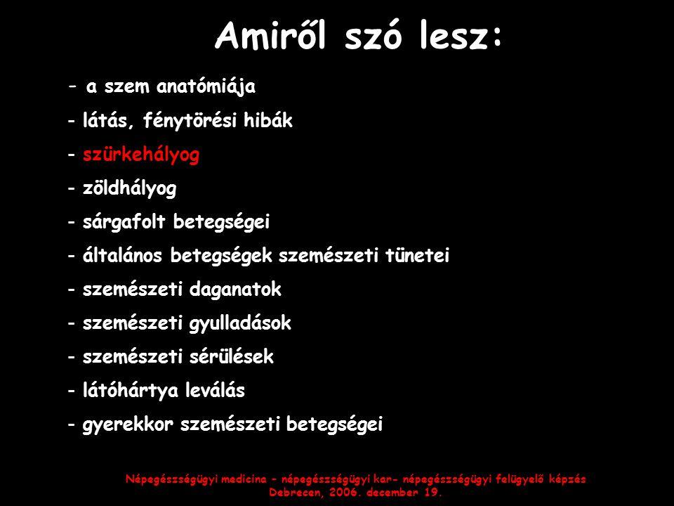 Népegészségügyi medicina – népegészségügyi kar- népegészségügyi felügyelő képzés Debrecen, 2006. december 19. Amiről szó lesz: - a szem anatómiája - l