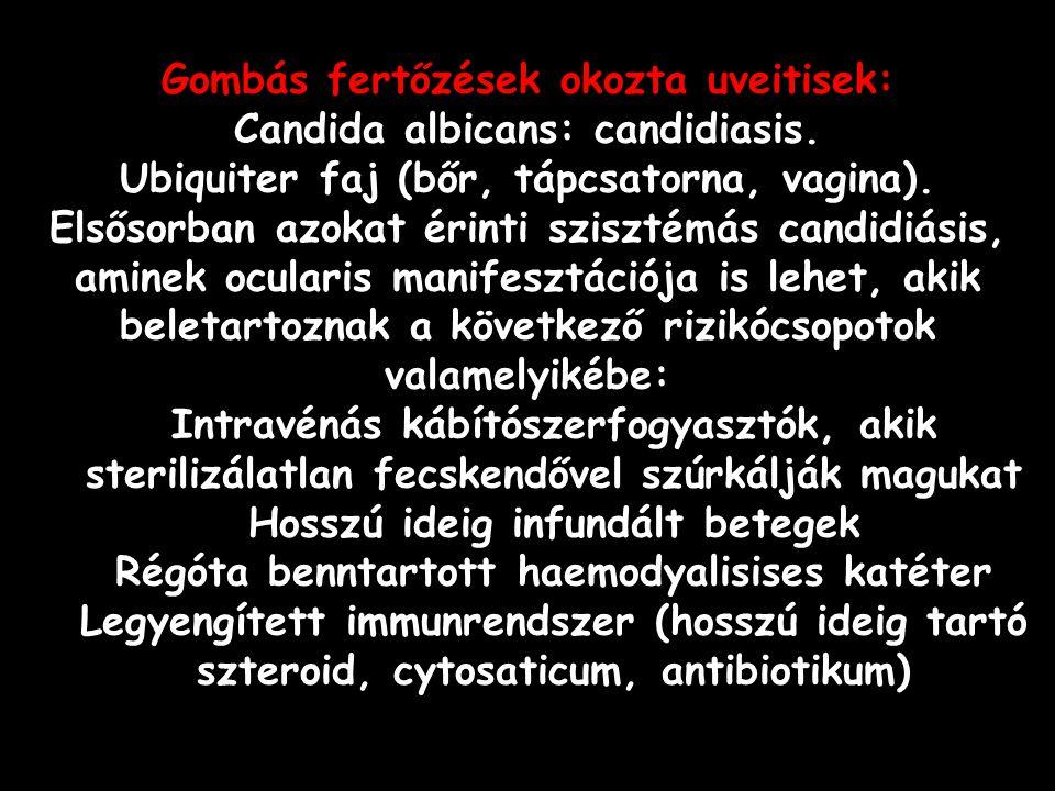 Gombás fertőzések okozta uveitisek: Candida albicans: candidiasis. Ubiquiter faj (bőr, tápcsatorna, vagina). Elsősorban azokat érinti szisztémás candi