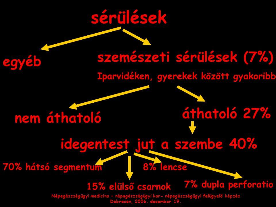 Népegészségügyi medicina – népegészségügyi kar- népegészségügyi felügyelő képzés Debrecen, 2006. december 19. sérülések szemészeti sérülések (7%) Ipar