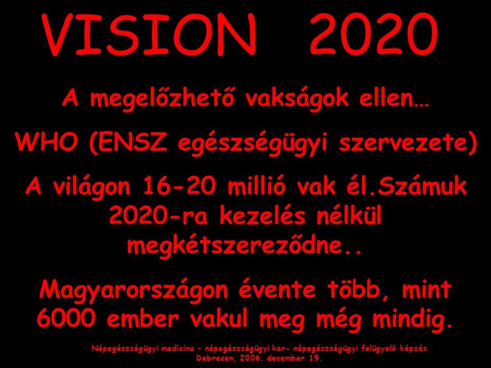 Népegészségügyi medicina – népegészségügyi kar- népegészségügyi felügyelő képzés Debrecen, 2006. december 19. VISION 2020 A megelőzhető vakságok ellen