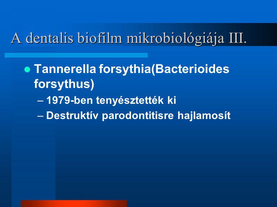 A dentalis biofilm mikrobiológiája III.