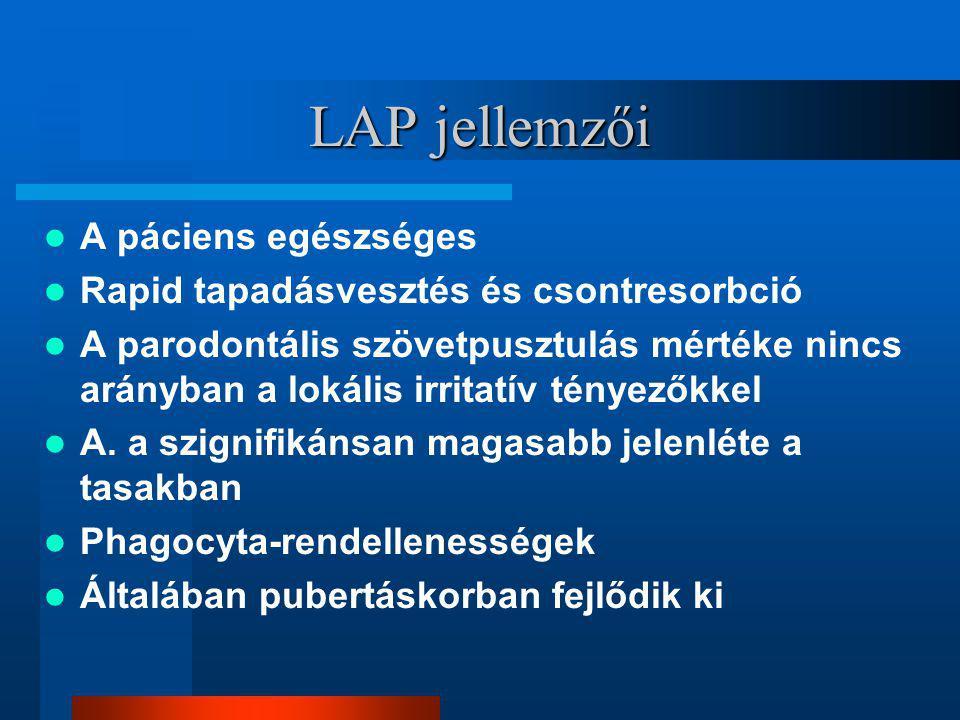 LAP jellemzői A páciens egészséges Rapid tapadásvesztés és csontresorbció A parodontális szövetpusztulás mértéke nincs arányban a lokális irritatív tényezőkkel A.