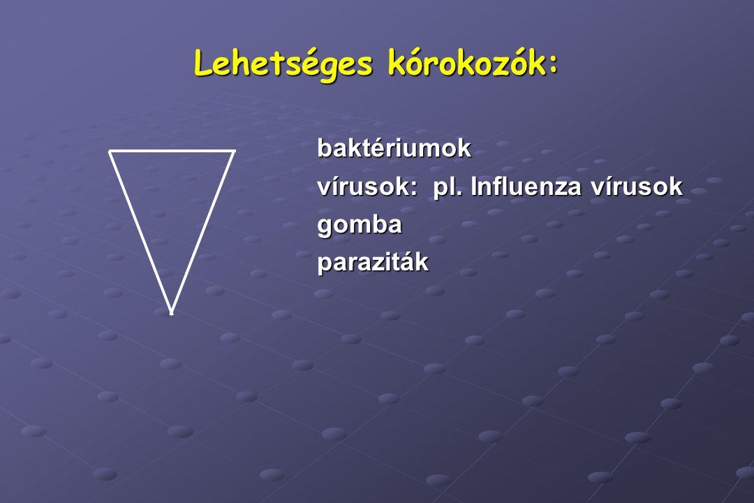 Lehetséges kórokozók: baktériumok vírusok: pl. Influenza vírusok gombaparaziták
