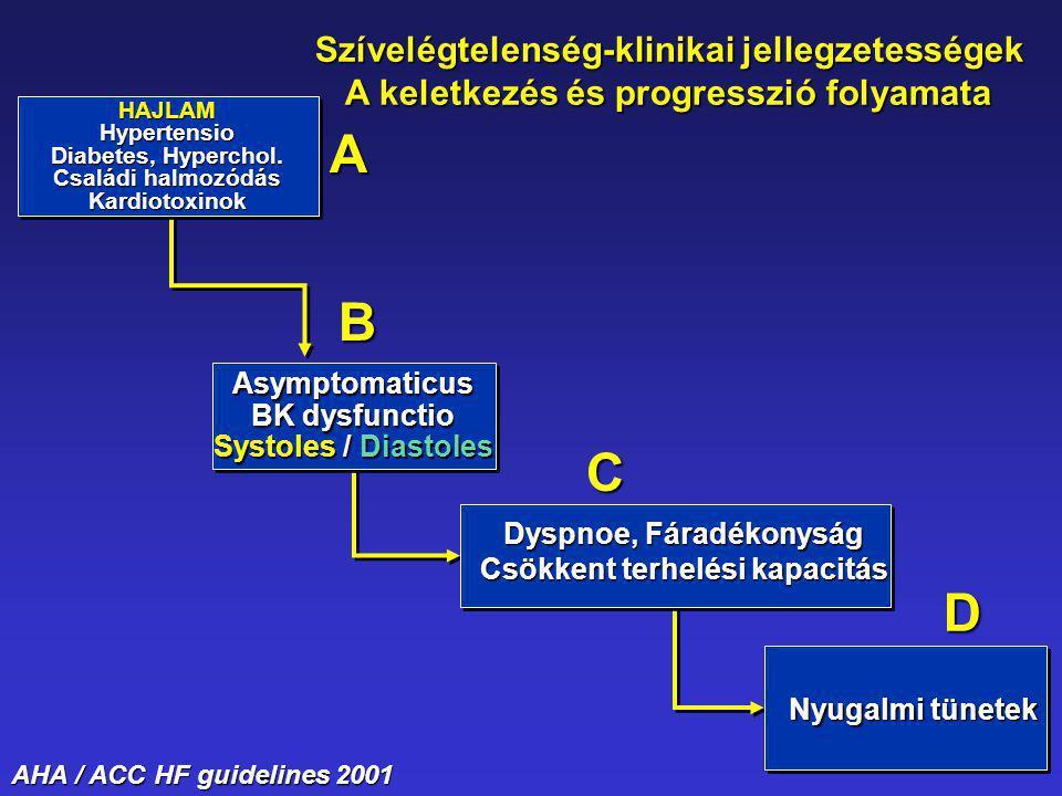 HAJLAMHypertensio Diabetes, Hyperchol. Családi halmozódás Kardiotoxinok Asymptomaticus BK dysfunctio Systoles / Diastoles Nyugalmi tünetek Dyspnoe, Fá