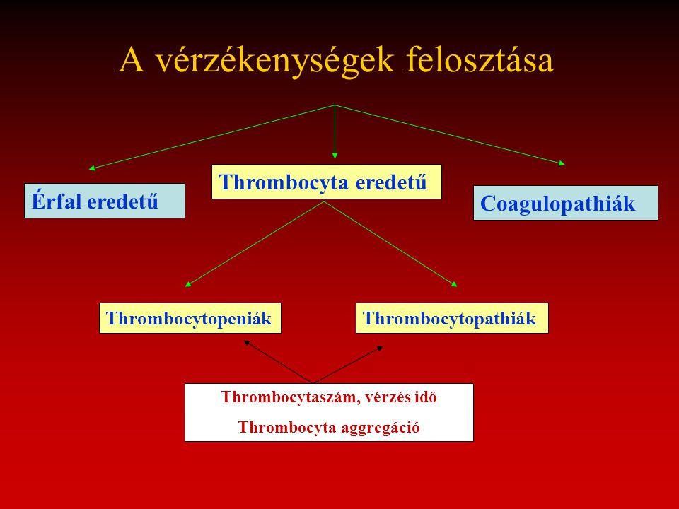 A vérzékenységek felosztása Thrombocyta eredetű Thrombocytopeniák Érfal eredetű Coagulopathiák Thrombocytopathiák Thrombocytaszám, vérzés idő Thromboc