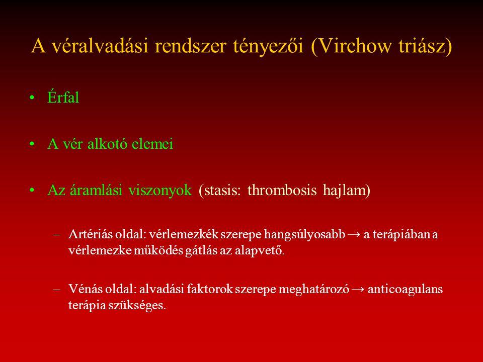 A véralvadási rendszer tényezői (Virchow triász) Érfal A vér alkotó elemei Az áramlási viszonyok (stasis: thrombosis hajlam) –Artériás oldal: vérlemez