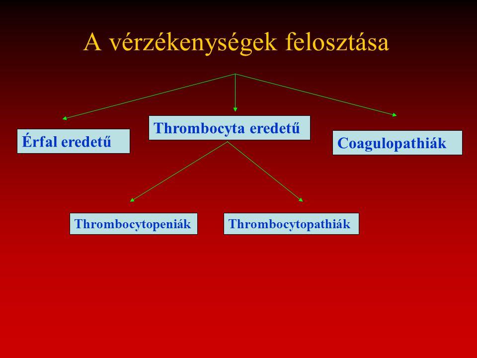 A vérzékenységek felosztása Thrombocyta eredetű Thrombocytopeniák Érfal eredetű Coagulopathiák Thrombocytopathiák