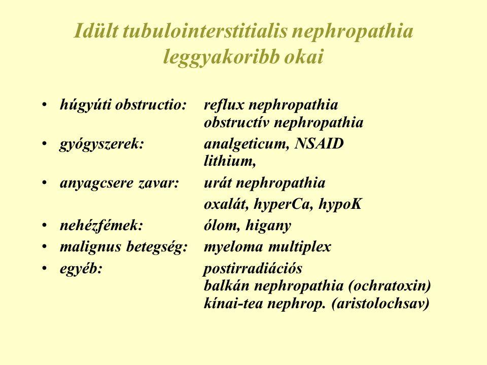 Obstructív uropathia okai Ureter/pyelon intrinsic: kő, alvadék, papilla, tumor, gomba, ureter strictura, UP/UV junctio dysfunctio extrinsic: gynecologiai tumor/gyull., terhesség retroperit.: fibrosis, tu/met., gyull.
