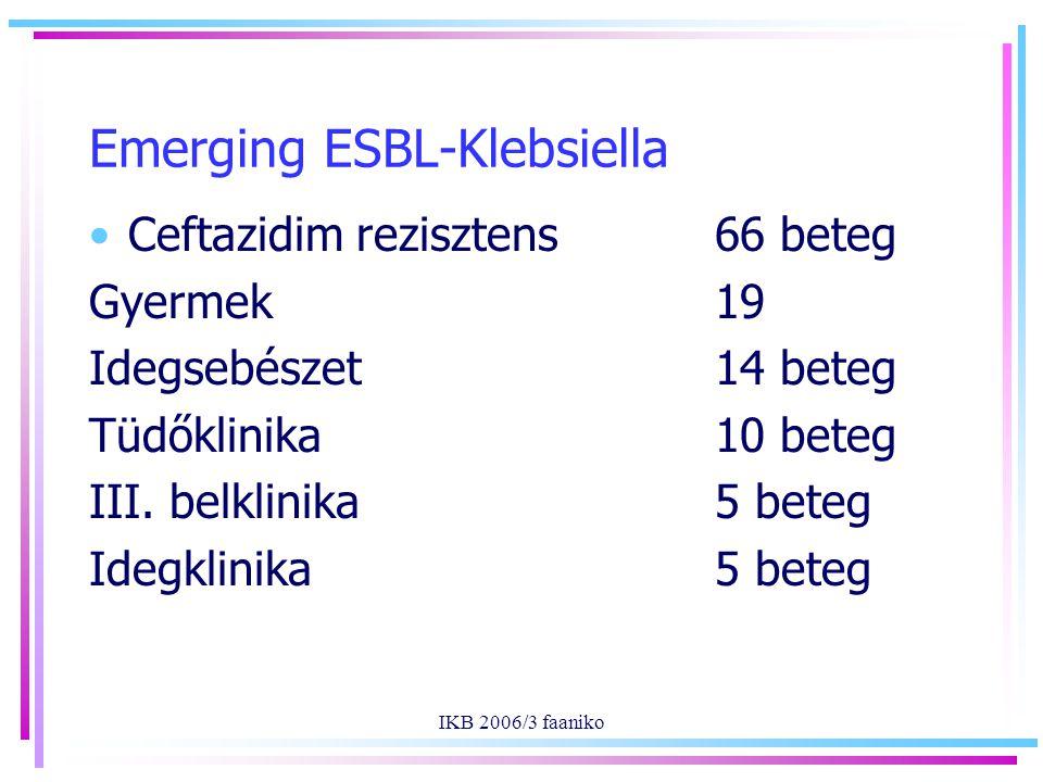 IKB 2006/3 faaniko Emerging ESBL-Klebsiella Ceftazidim rezisztens66 beteg Gyermek19 Idegsebészet 14 beteg Tüdőklinika10 beteg III. belklinika 5 beteg