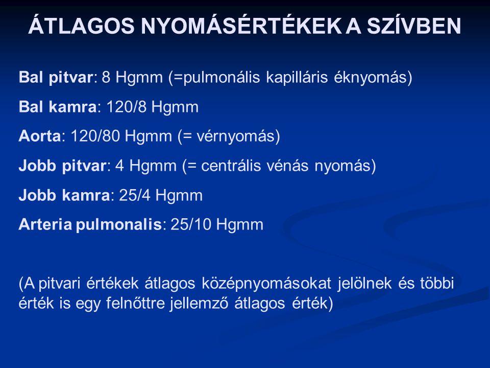 ÁTLAGOS NYOMÁSÉRTÉKEK A SZÍVBEN Bal pitvar: 8 Hgmm (=pulmonális kapilláris éknyomás) Bal kamra: 120/8 Hgmm Aorta: 120/80 Hgmm (= vérnyomás) Jobb pitvar: 4 Hgmm (= centrális vénás nyomás) Jobb kamra: 25/4 Hgmm Arteria pulmonalis: 25/10 Hgmm (A pitvari értékek átlagos középnyomásokat jelölnek és többi érték is egy felnőttre jellemző átlagos érték)