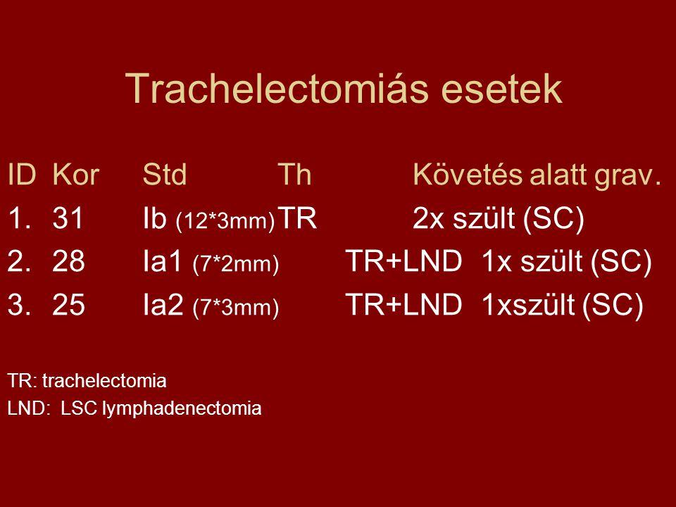 Trachelectomiás esetek IDKorStd ThKövetés alatt grav. 1.31Ib (12*3mm) TR 2x szült (SC) 2.28Ia1 (7*2mm) TR+LND1x szült (SC) 3.25Ia2 (7*3mm) TR+LND1xszü