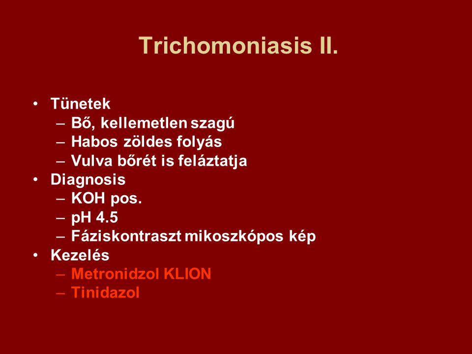 Trichomoniasis II. Tünetek –Bő, kellemetlen szagú –Habos zöldes folyás –Vulva bőrét is feláztatja Diagnosis –KOH pos. –pH 4.5 –Fáziskontraszt mikoszkó
