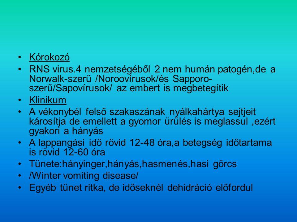 Kórokozó RNS virus.4 nemzetségéből 2 nem humán patogén,de a Norwalk-szerű /Noroovírusok/és Sapporo- szerű/Sapovírusok/ az embert is megbetegítik Klinikum A vékonybél felső szakaszának nyálkahártya sejtjeit károsítja de emellett a gyomor ürülés is meglassul,ezért gyakori a hányás A lappangási idő rövid 12-48 óra,a betegség időtartama is rövid 12-60 óra Tünete:hányinger,hányás,hasmenés,hasi görcs /Winter vomiting disease/ Egyéb tünet ritka, de időseknél dehidráció előfordul
