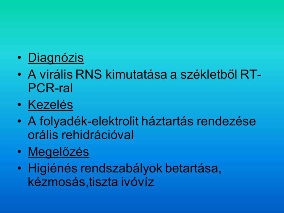 Diagnózis A virális RNS kimutatása a székletből RT- PCR-ral Kezelés A folyadék-elektrolit háztartás rendezése orális rehidrációval Megelőzés Higiénés rendszabályok betartása, kézmosás,tiszta ivóvíz