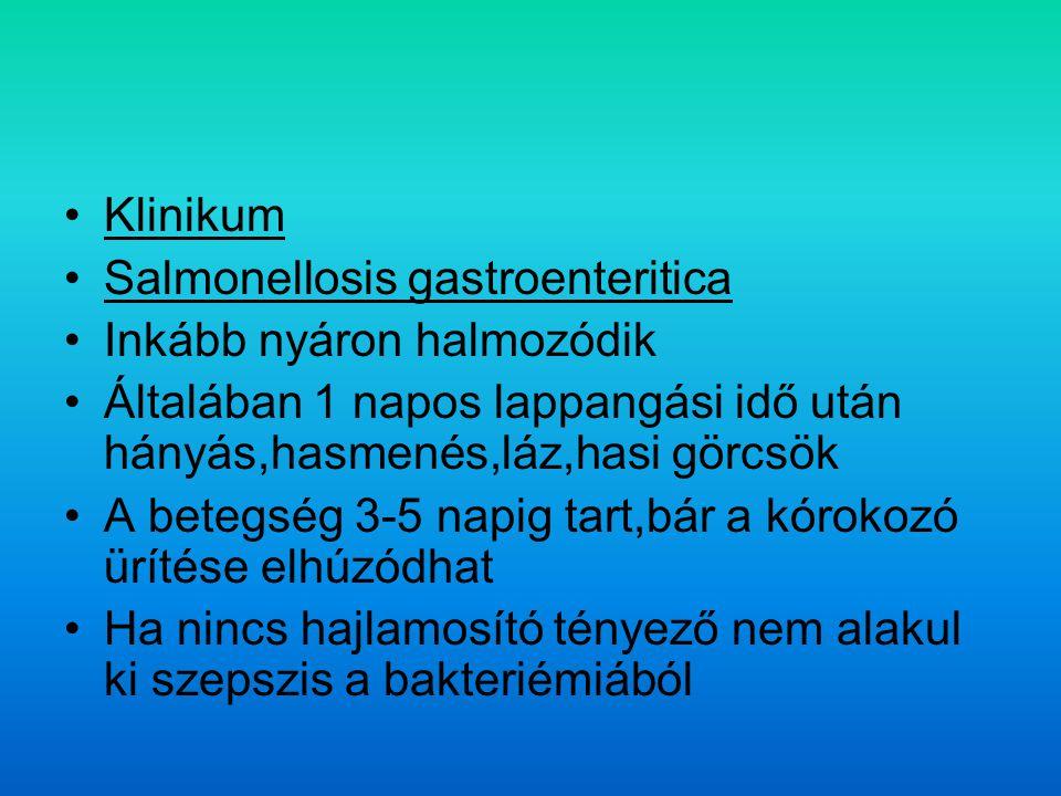 Klinikum Salmonellosis gastroenteritica Inkább nyáron halmozódik Általában 1 napos lappangási idő után hányás,hasmenés,láz,hasi görcsök A betegség 3-5 napig tart,bár a kórokozó ürítése elhúzódhat Ha nincs hajlamosító tényező nem alakul ki szepszis a bakteriémiából