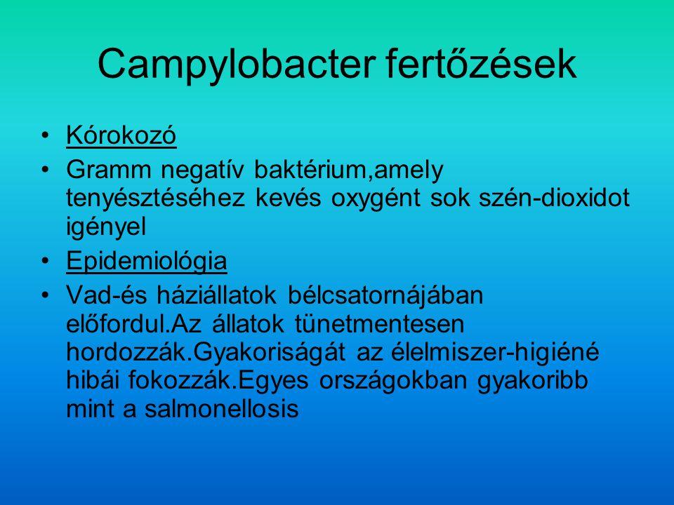 Campylobacter fertőzések Kórokozó Gramm negatív baktérium,amely tenyésztéséhez kevés oxygént sok szén-dioxidot igényel Epidemiológia Vad-és háziállatok bélcsatornájában előfordul.Az állatok tünetmentesen hordozzák.Gyakoriságát az élelmiszer-higiéné hibái fokozzák.Egyes országokban gyakoribb mint a salmonellosis