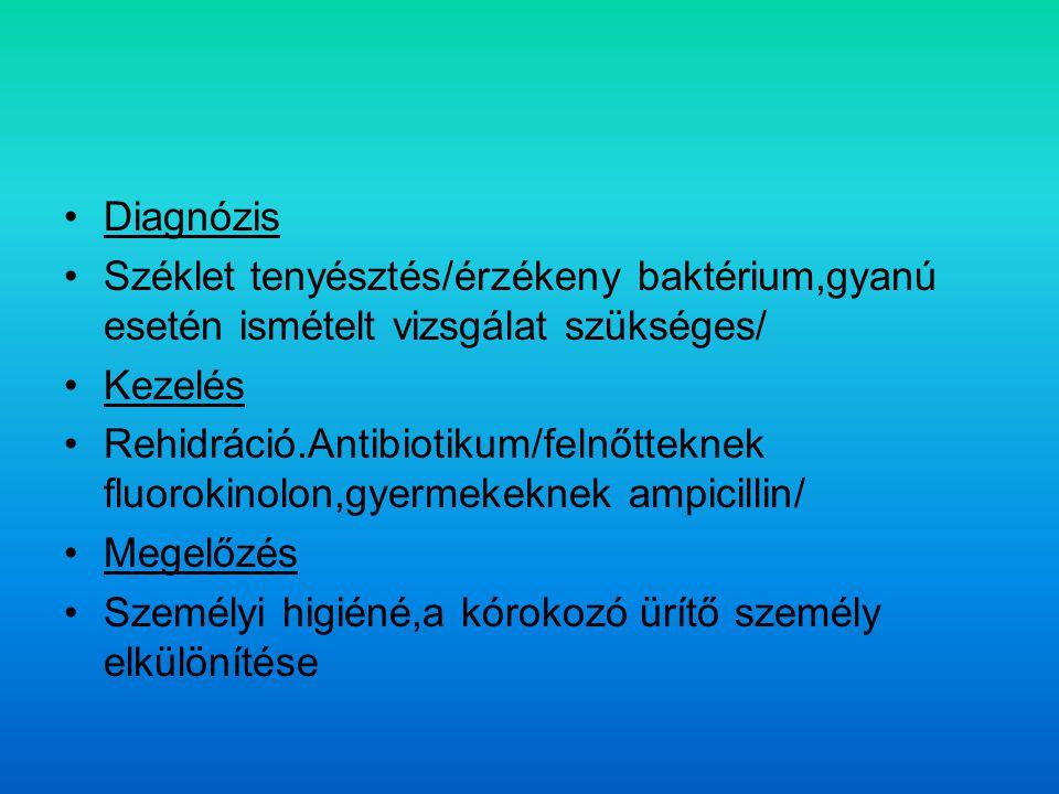 Diagnózis Széklet tenyésztés/érzékeny baktérium,gyanú esetén ismételt vizsgálat szükséges/ Kezelés Rehidráció.Antibiotikum/felnőtteknek fluorokinolon,gyermekeknek ampicillin/ Megelőzés Személyi higiéné,a kórokozó ürítő személy elkülönítése