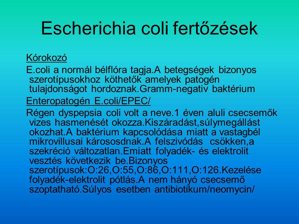 Escherichia coli fertőzések Kórokozó E.coli a normál bélflóra tagja.A betegségek bizonyos szerotípusokhoz köthetők amelyek patogén tulajdonságot hordoznak.Gramm-negativ baktérium Enteropatogén E.coli/EPEC/ Régen dyspepsia coli volt a neve.1 éven aluli csecsemők vizes hasmenését okozza.Kiszáradást,súlymegállást okozhat.A baktérium kapcsolódása miatt a vastagbél mikrovillusai kárososdnak.A felszivódás csökken,a szekréció változatlan.Emiatt folyadék- és elektrolit vesztés következik be.Bizonyos szerotípusok:O:26,O:55,O:86,O:111,O:126.Kezelése folyadék-elektrolit pótlás.A nem hányó csecsemő szoptatható.Súlyos esetben antibiotikum/neomycin/