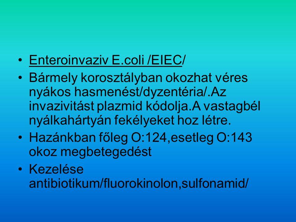 Enteroinvaziv E.coli /EIEC/ Bármely korosztályban okozhat véres nyákos hasmenést/dyzentéria/.Az invazivitást plazmid kódolja.A vastagbél nyálkahártyán fekélyeket hoz létre.