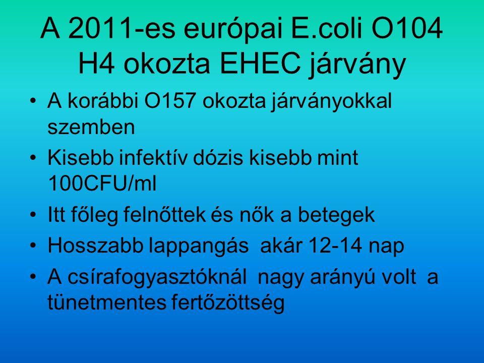 A 2011-es európai E.coli O104 H4 okozta EHEC járvány A korábbi O157 okozta járványokkal szemben Kisebb infektív dózis kisebb mint 100CFU/ml Itt főleg felnőttek és nők a betegek Hosszabb lappangás akár 12-14 nap A csírafogyasztóknál nagy arányú volt a tünetmentes fertőzöttség