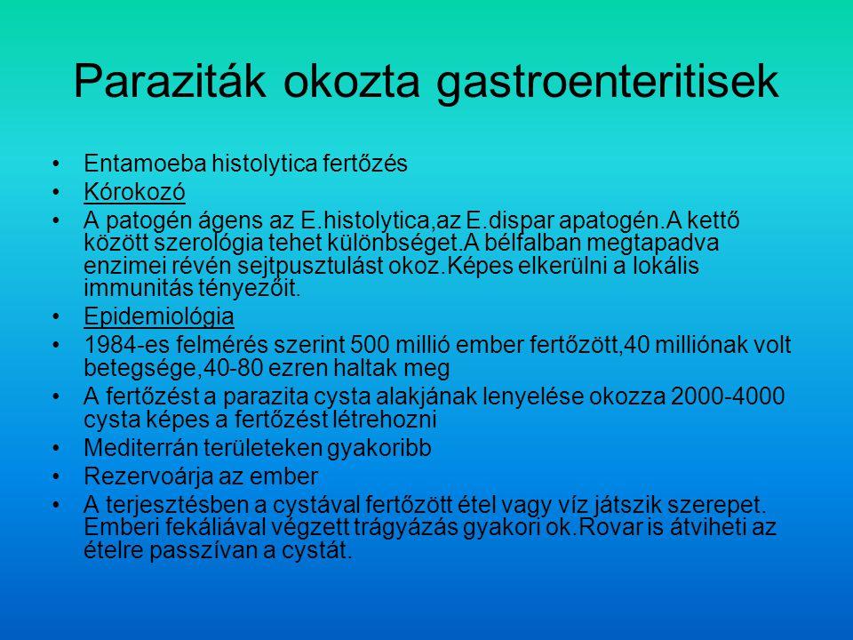 Paraziták okozta gastroenteritisek Entamoeba histolytica fertőzés Kórokozó A patogén ágens az E.histolytica,az E.dispar apatogén.A kettő között szerológia tehet különbséget.A bélfalban megtapadva enzimei révén sejtpusztulást okoz.Képes elkerülni a lokális immunitás tényezőit.