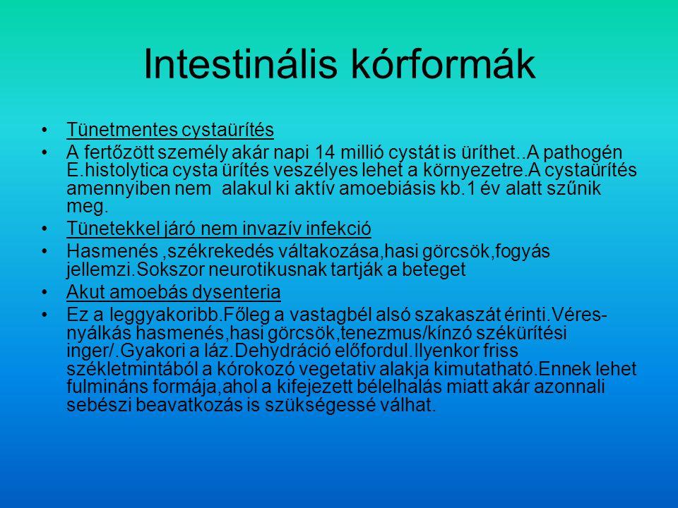 Intestinális kórformák Tünetmentes cystaürítés A fertőzött személy akár napi 14 millió cystát is üríthet..A pathogén E.histolytica cysta ürítés veszélyes lehet a környezetre.A cystaürítés amennyiben nem alakul ki aktív amoebiásis kb.1 év alatt szűnik meg.