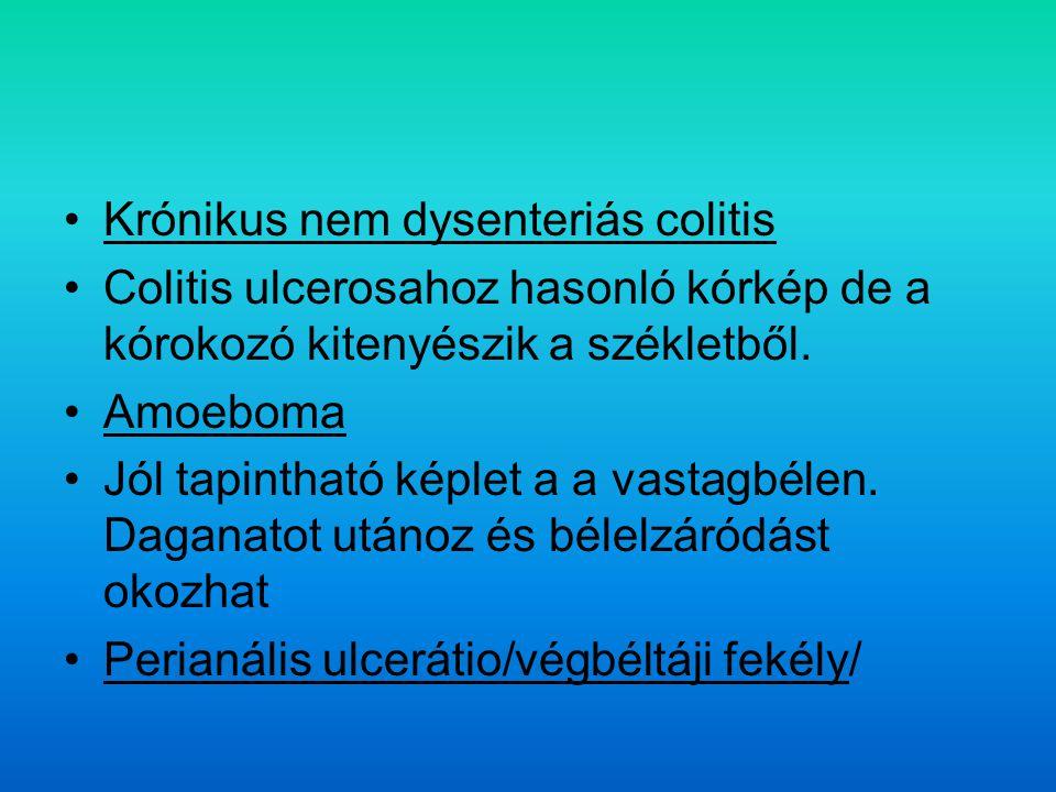 Krónikus nem dysenteriás colitis Colitis ulcerosahoz hasonló kórkép de a kórokozó kitenyészik a székletből.